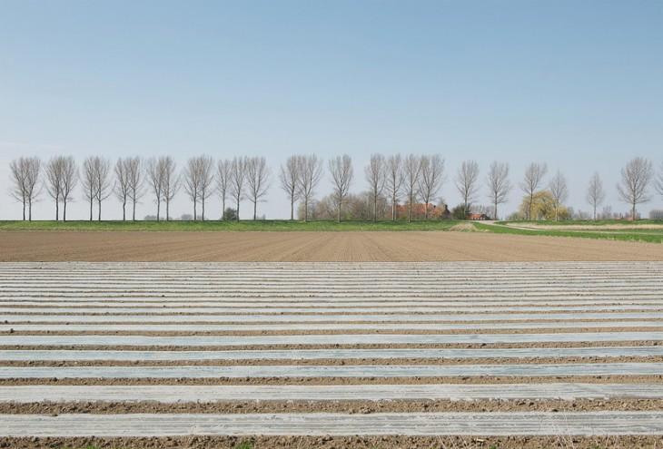 Achthuizen, NL