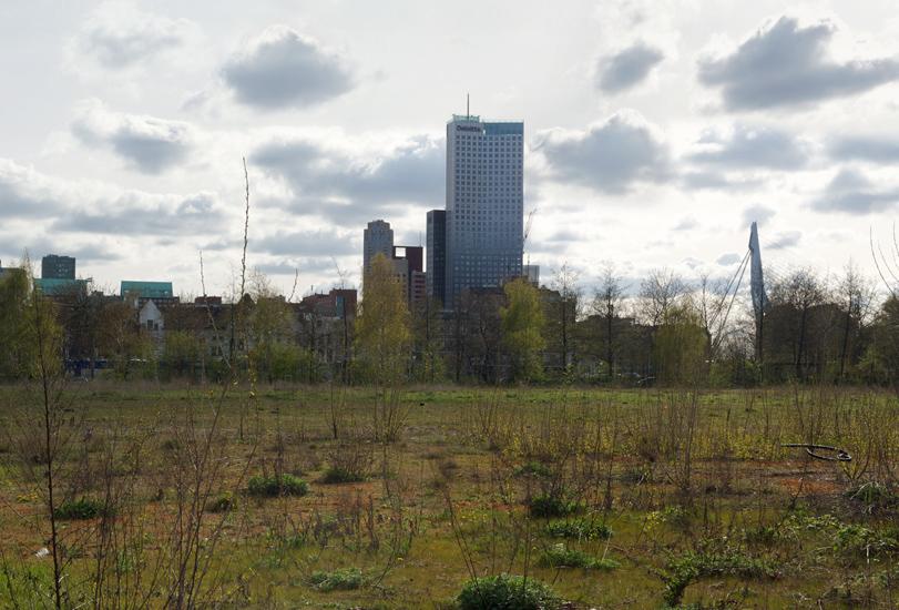 Kop van Zuid, Rotterdam, NL