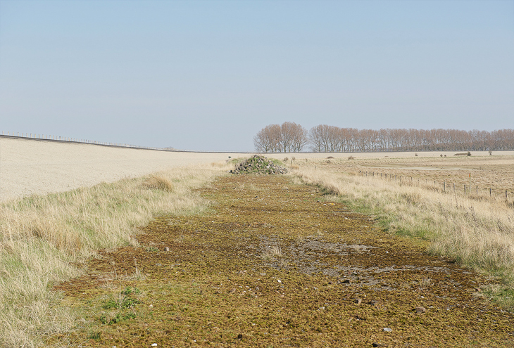 Oude Tonge, NL