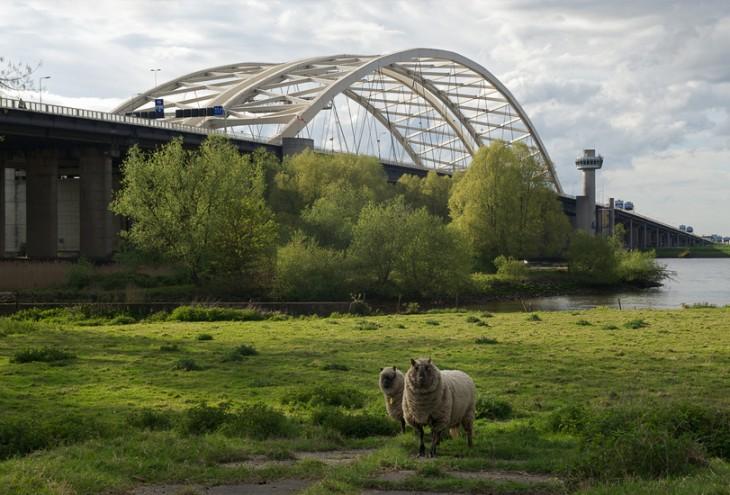 Rotterdam IJsselmonde, NL