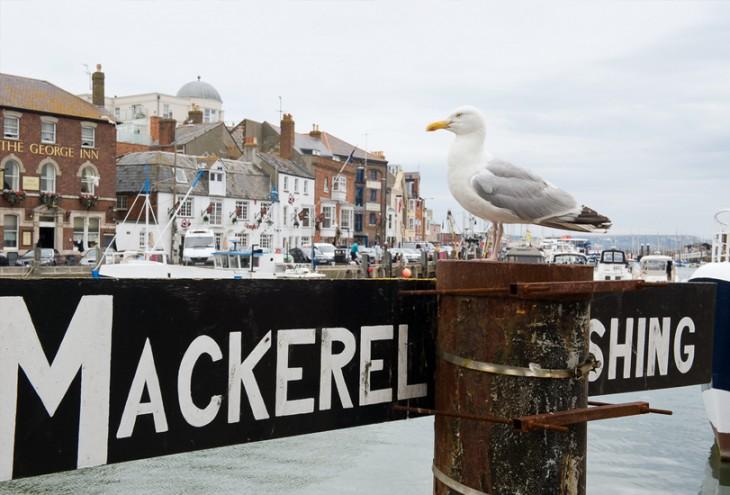 Weymouth, UK