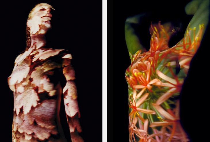 Herballistics [solotentoonstelling Noorderlicht Fotomanifestatie 1999]